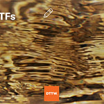 Gold ETFs : The Basics and Whether you Should Trade Them